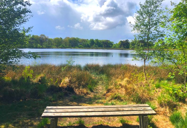 Camping Witterzomer review